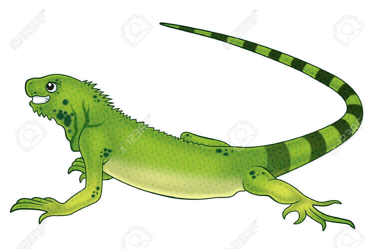 Iguana clipart desert iguana. Free download best on