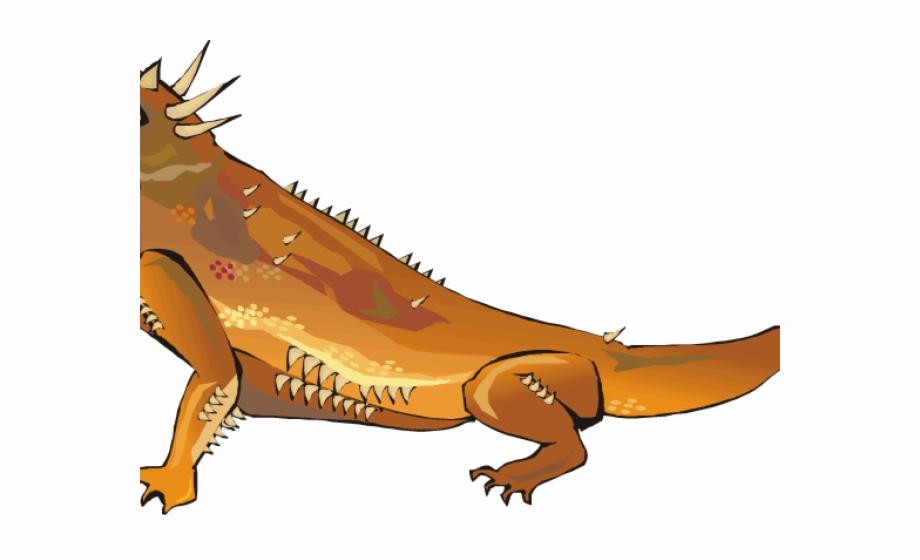 Green free png images. Iguana clipart desert iguana