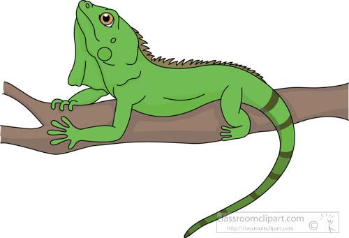Iguana clipart desert iguana. Reptile lizard green portal