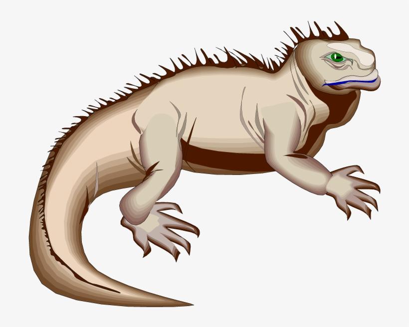Iguana clipart downloadable. Green hole marine animated