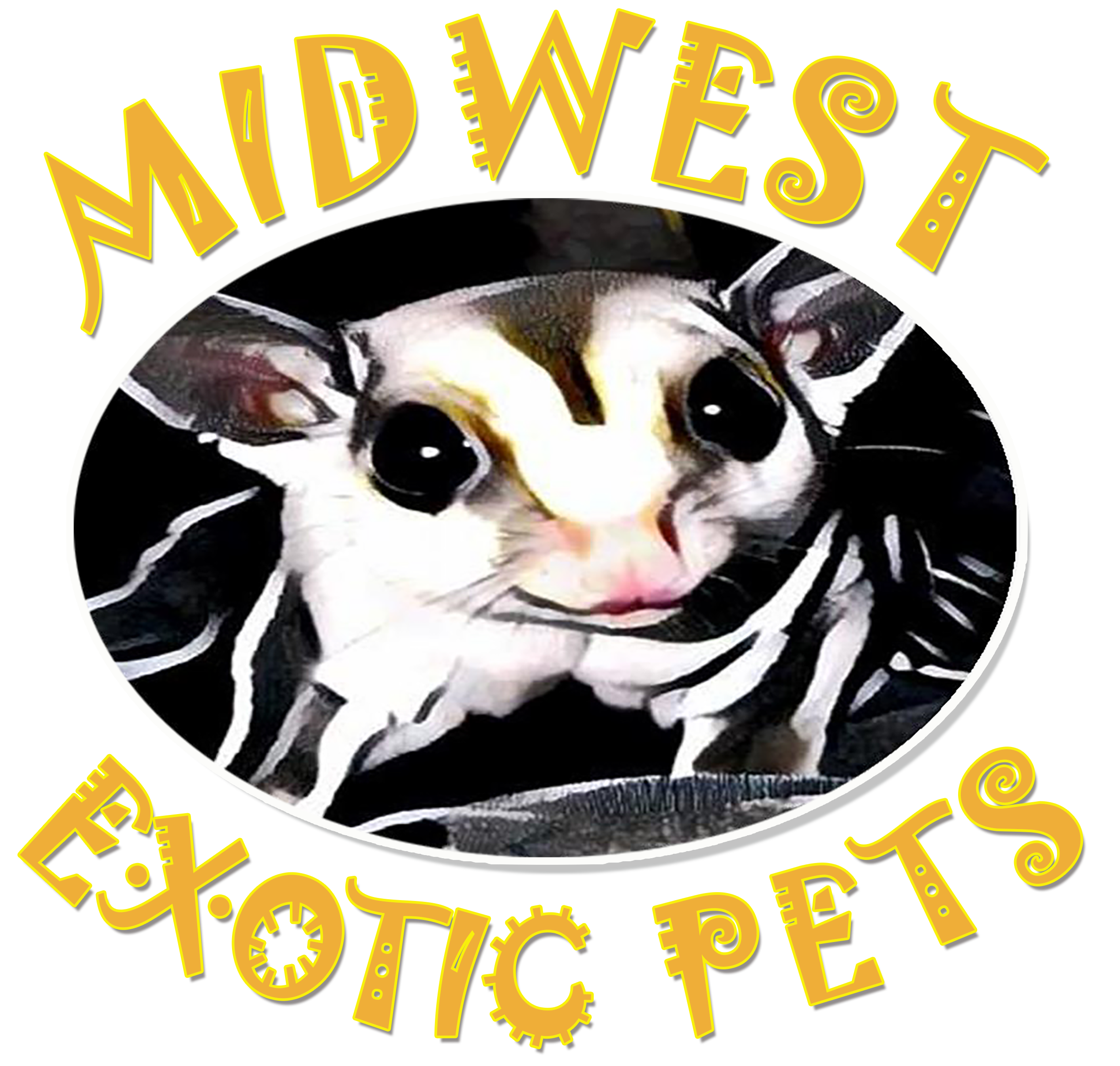 Lizard clipart exotic animal. Welcome to midwest pets