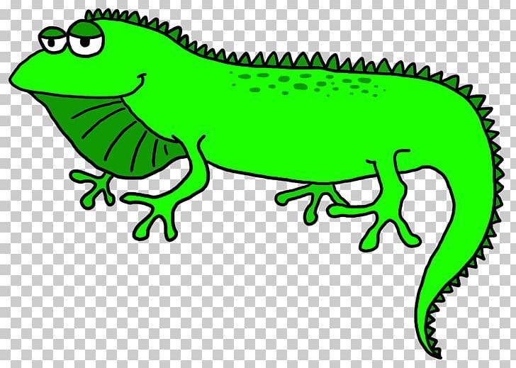 Green png amphibian animal. Lizard clipart iguana
