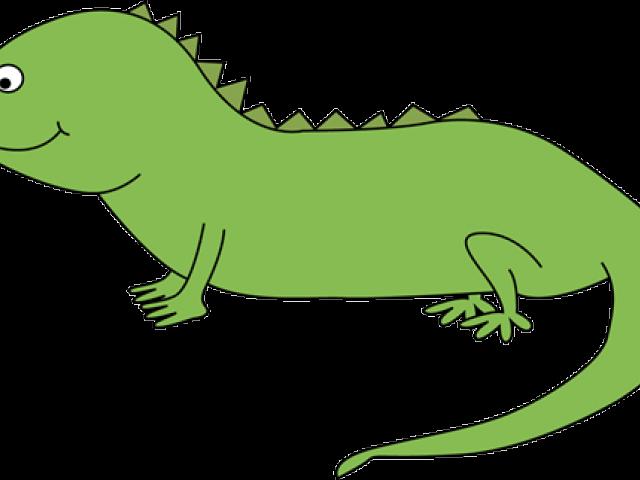 Shamrock free download clip. Iguana clipart outline