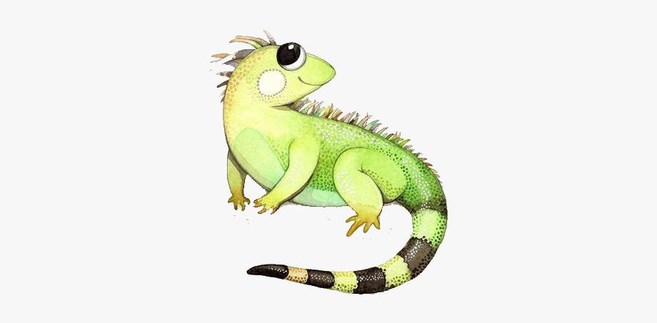 Clip art cute chameleon. Iguana clipart rainforest animal