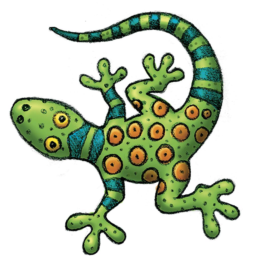 Iguana clipart rainforest animal. Desert animals free download