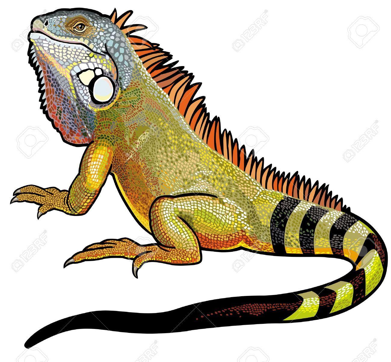 Stock vector dog snake. Iguana clipart yellow green