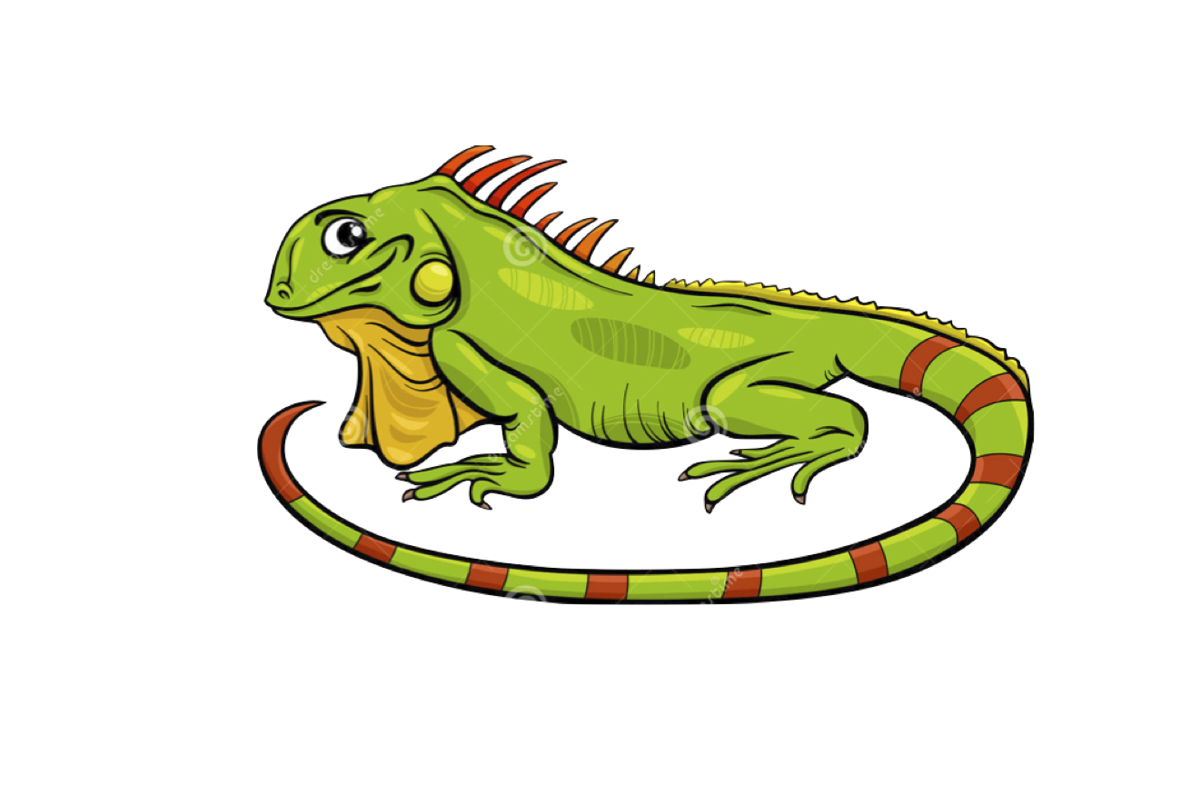 Iguana clipart yellow green. My first storybook