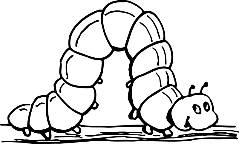Inchworm medium image png. Worm clipart colouring page