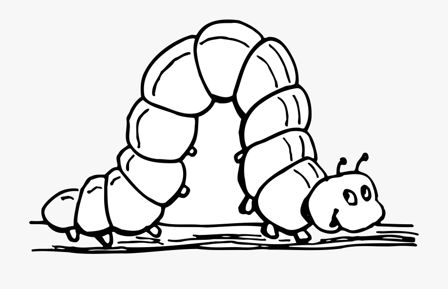 Worm clipart bioaccumulation. Inchworm black and white