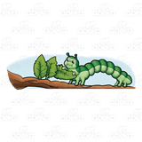 Garden eating on stick. Inchworm clipart gardener