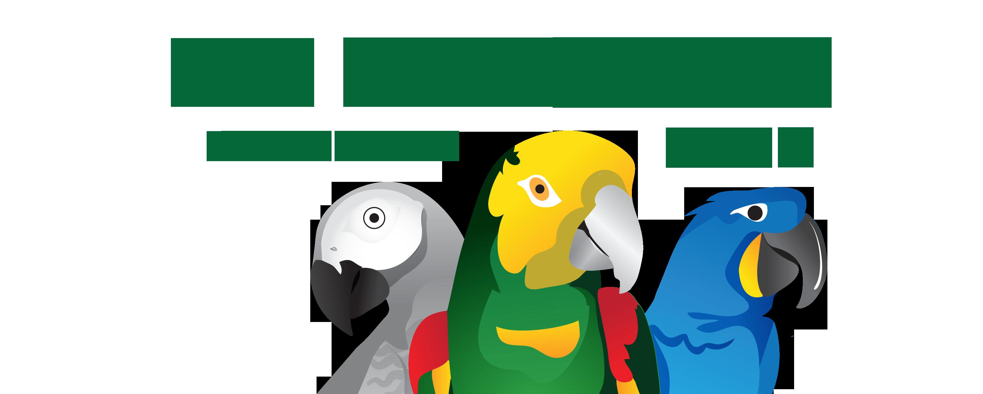 Tx parrots l c. Parrot clipart sun conure