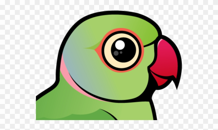 Parrot clipart green indian. Rose ringed parakeet png