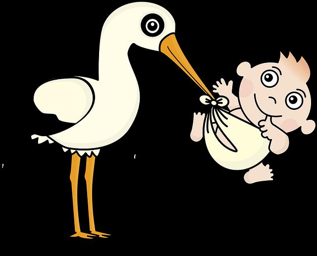 Free image on pixabay. Infant clipart offspring