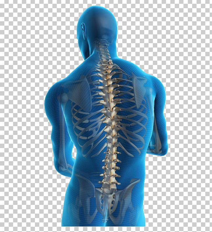 Low back neck human. Injury clipart bone pain