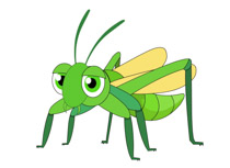 Free clip art pictures. Insect clipart