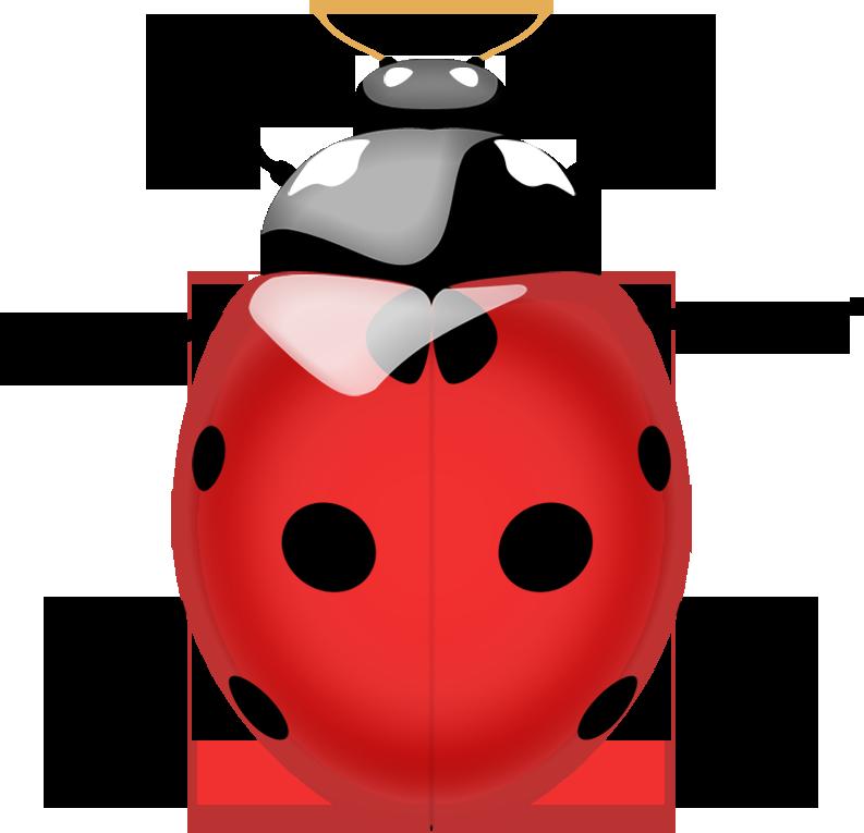 Ladybug clipart ladybug life cycle. Png image bug pinterest