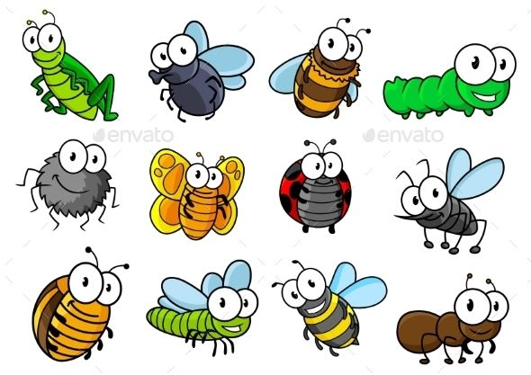 Collection of vector cartoon. Insect clipart colorful bug