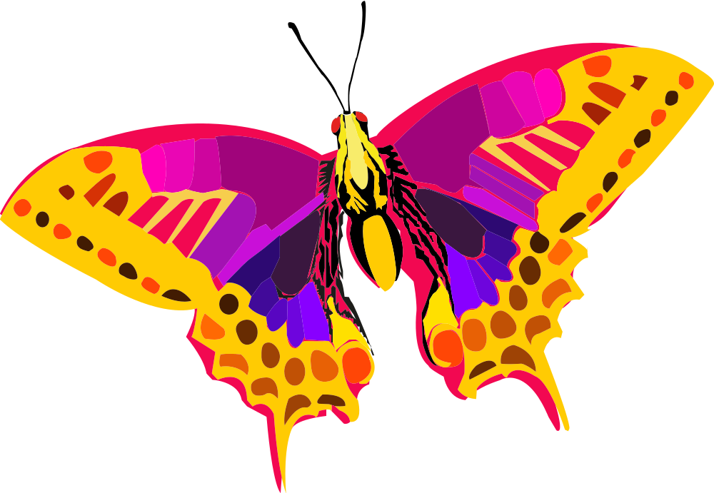 Onlinelabels clip art abstract. Insect clipart colorful flying butterfly