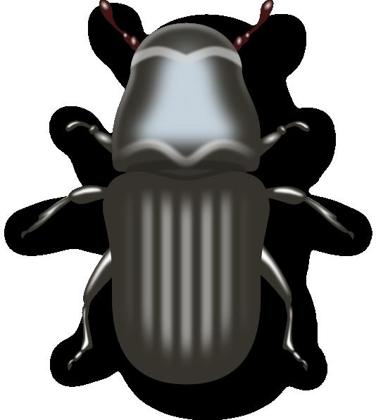 Trail clipart bug. Clip art at clker