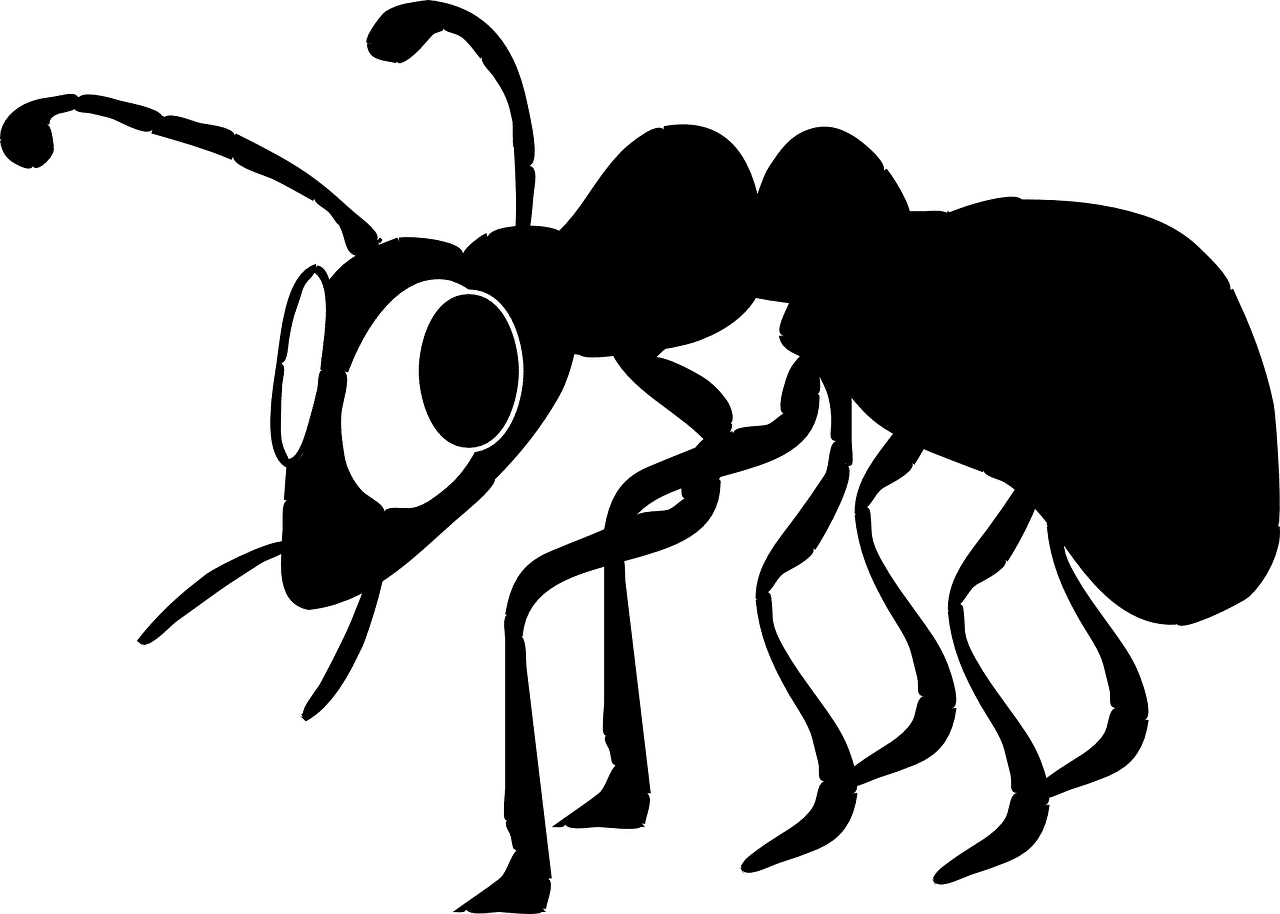 What s termites role. Insect clipart dead insect