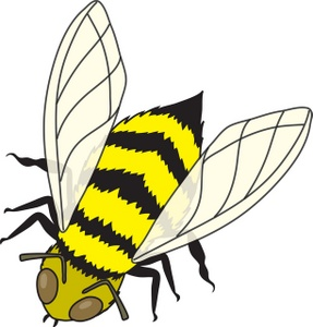 Insects clipart different insect. Free cliparts download clip