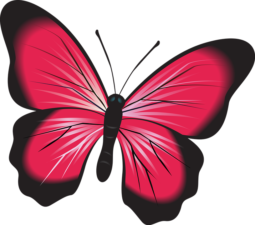 Insects clipart red bug. Butterfly free collection download