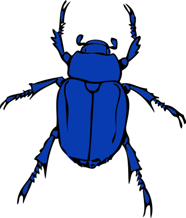 Insects clipart yellow bug. Beetle free download best