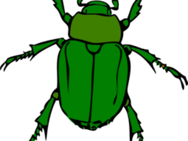 Insects clipart angry.  insect huge freebie