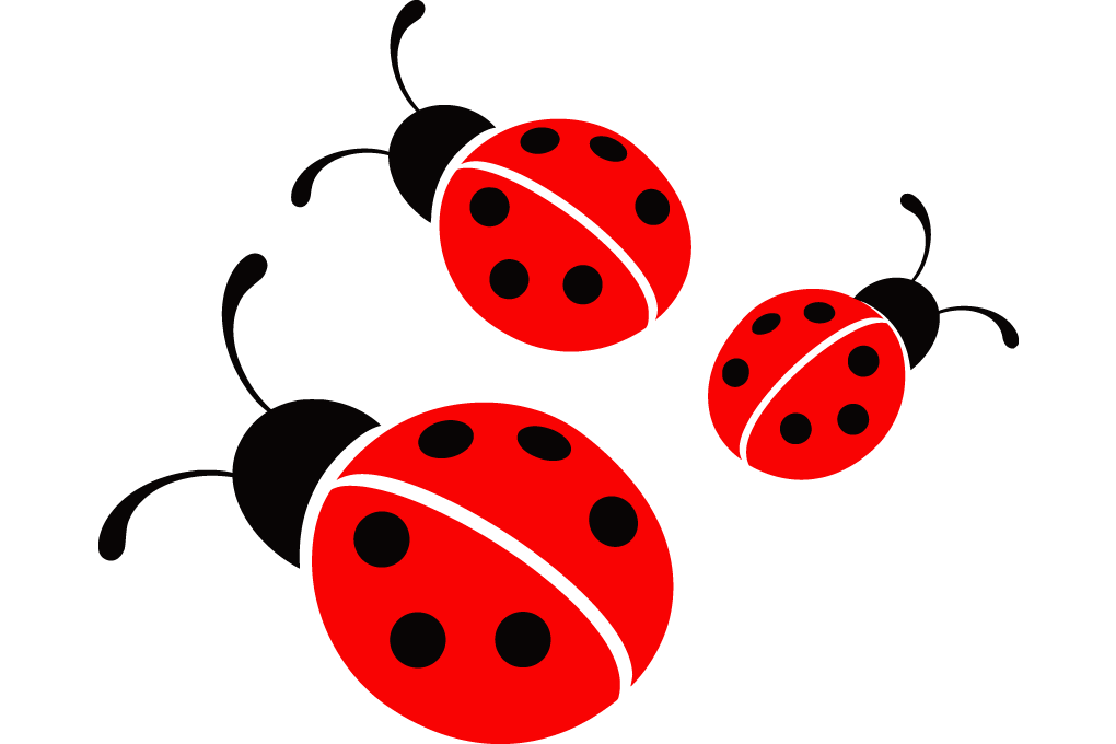 Free download best on. Ladybugs clipart little bug