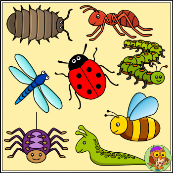 Bug and color bw. Insect clipart minibeast