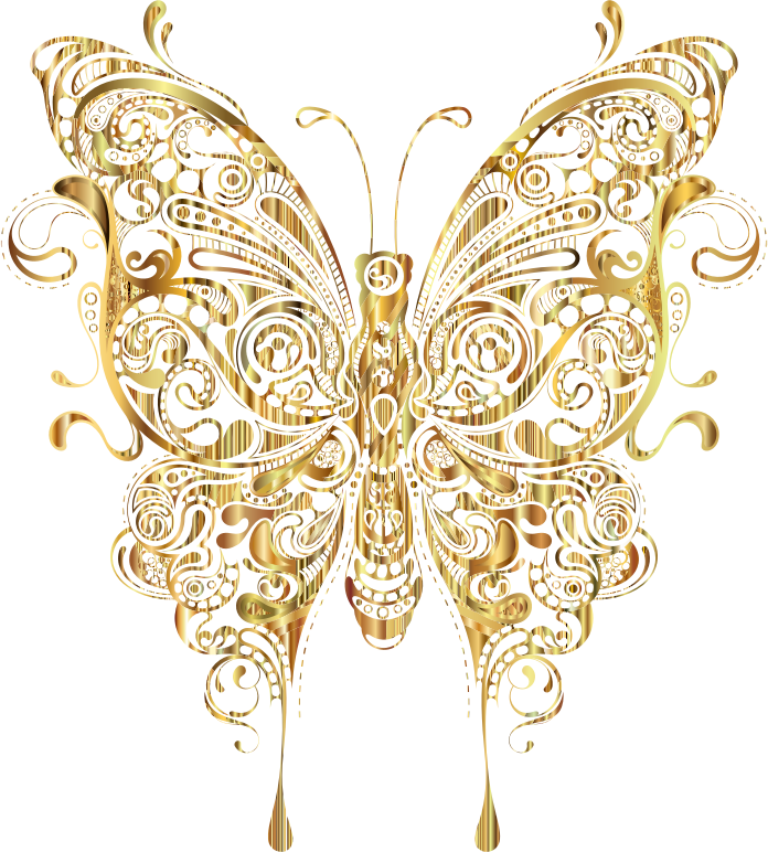moth clipart insect