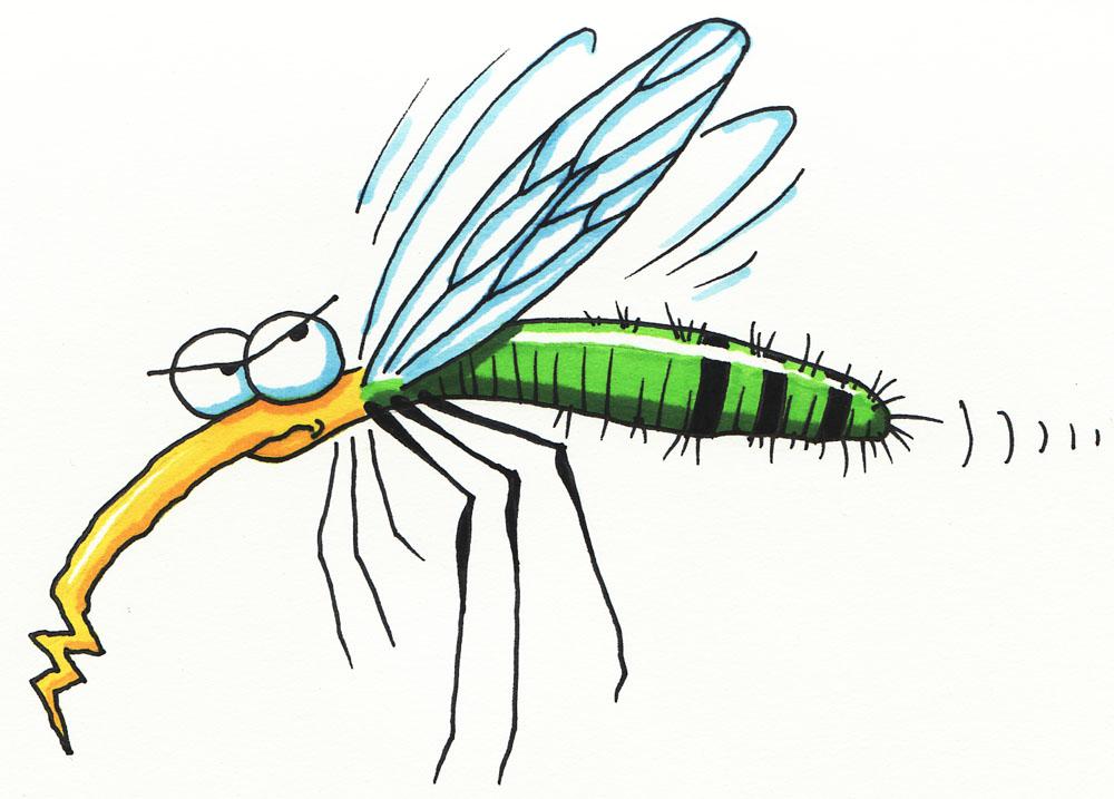 Mosquito clipart mozzie. Portal
