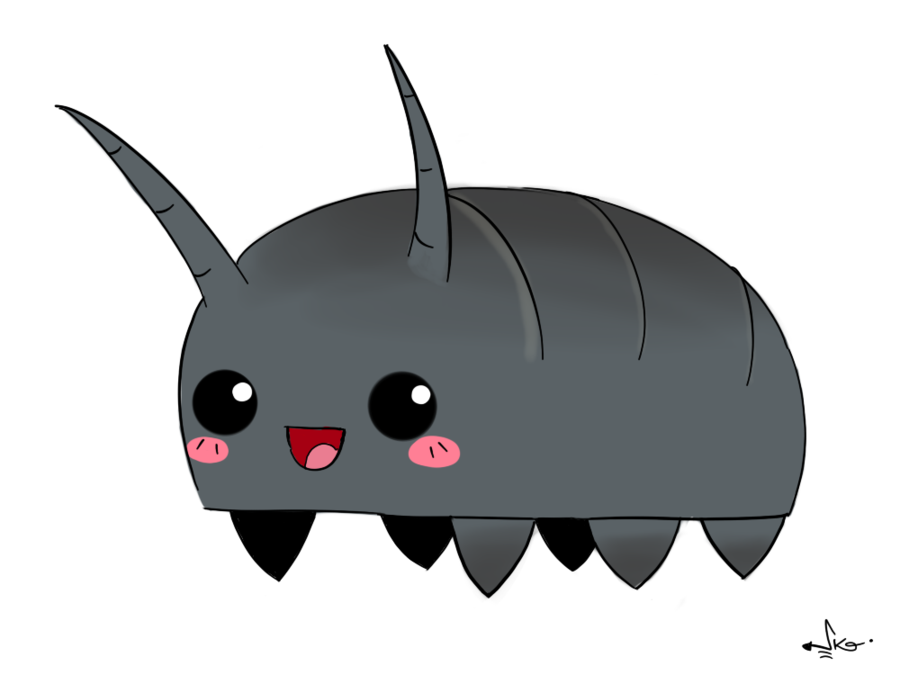 Pill bugs drawing clip. Insects clipart pillbug