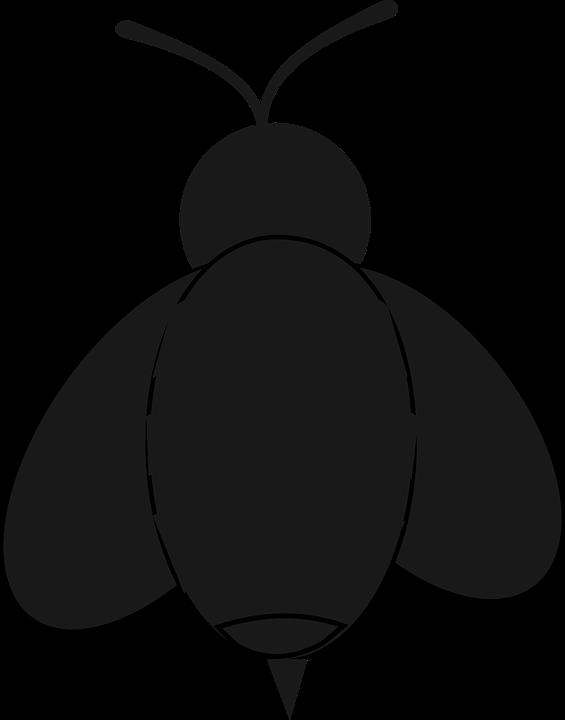 X dumielauxepices net . Insect clipart serangga