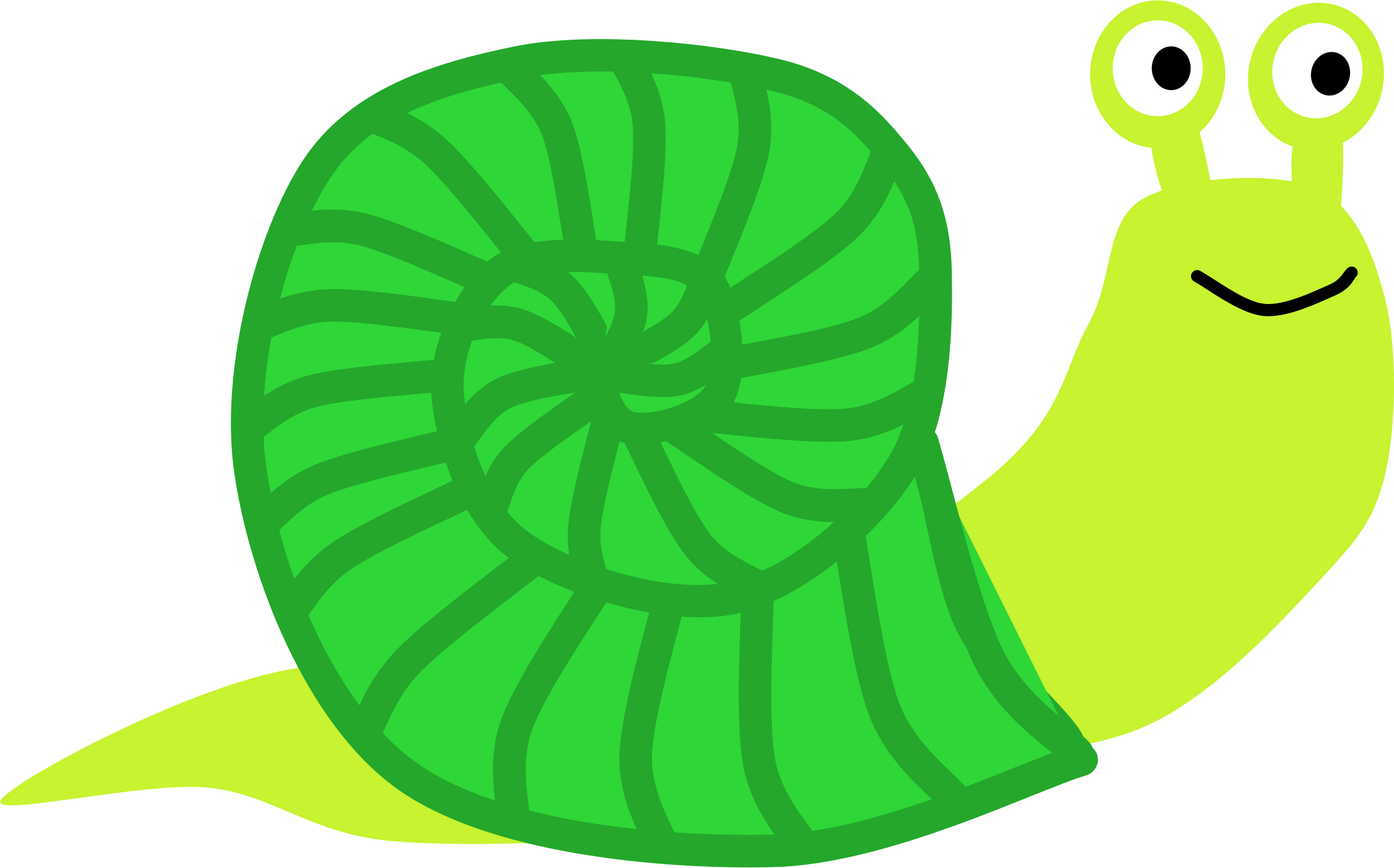 Snail big image png. Shell clipart gastropod