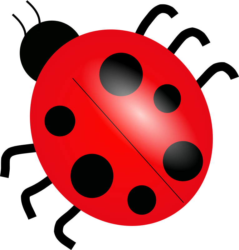 Ladybugs clipart side view. Beetle panda free images