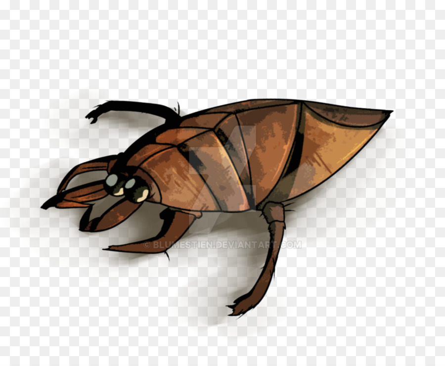 Insects clipart water beetle. Insect giant bugs drawing