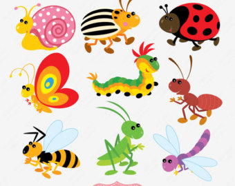 Insect clipart different insect. Free insects cliparts download