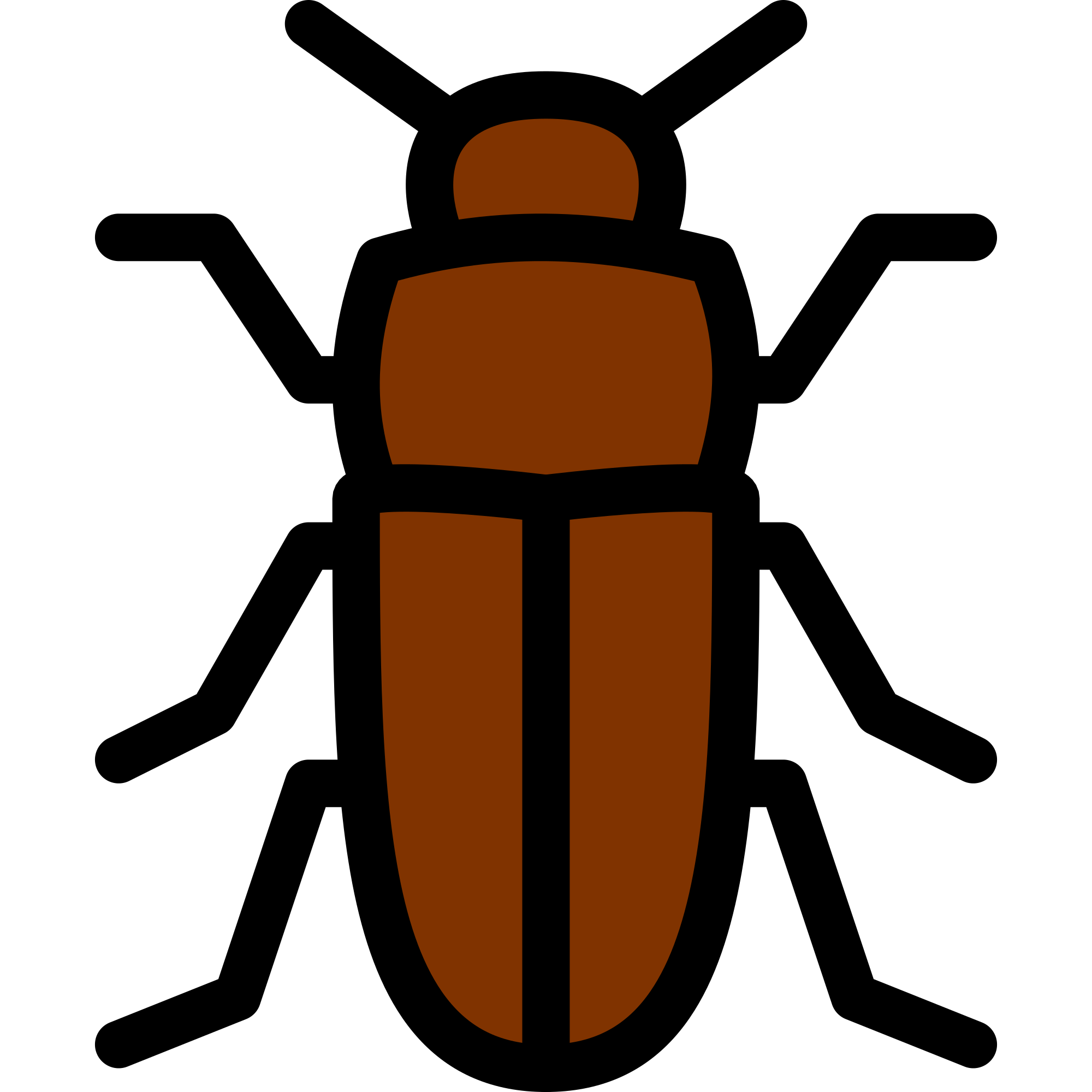 Insects clipart darkling beetle. File icon tribolium castaneum