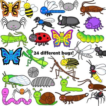 Insects clipart different insect. Bugs clip art and