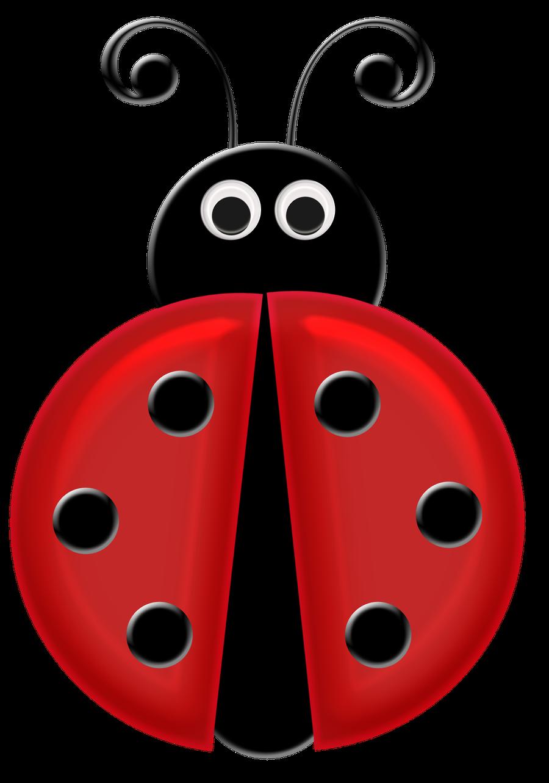 Joaninha minus already felt. Ladybug clipart angry