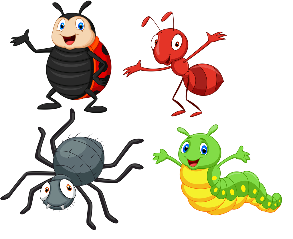 soloveika papusi insecte. Insects clipart garden insect