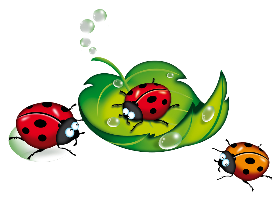 Ladybugs clipart good luck symbol. Pin by zuzana gogov