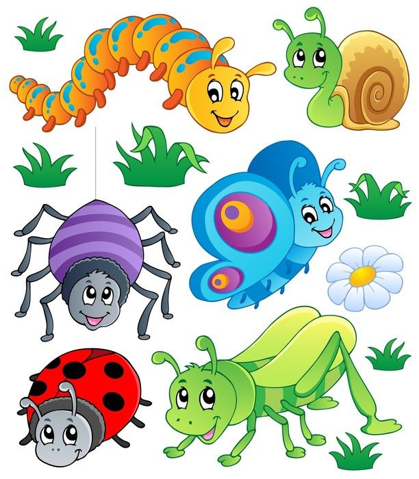 Insects clipart happy. Critters stretched canvas