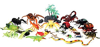 Amazon com hanlip toys. Insects clipart jungle
