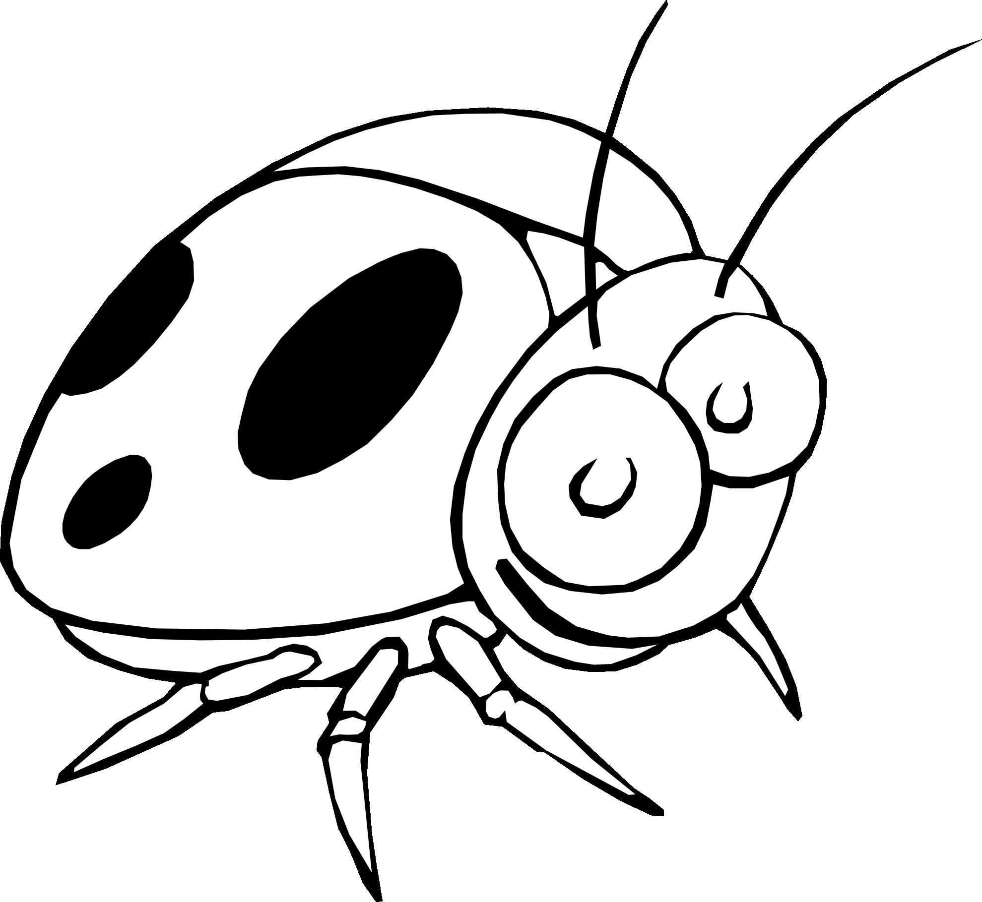 Bugs black and white. Ladybugs clipart free baby