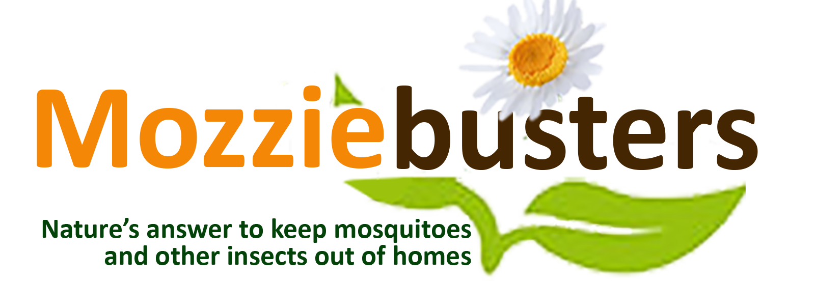 Mosquito clipart mozzie. Hi glitz buster insect