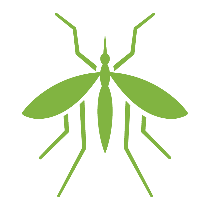 Pest control services spider. Insects clipart pillbug