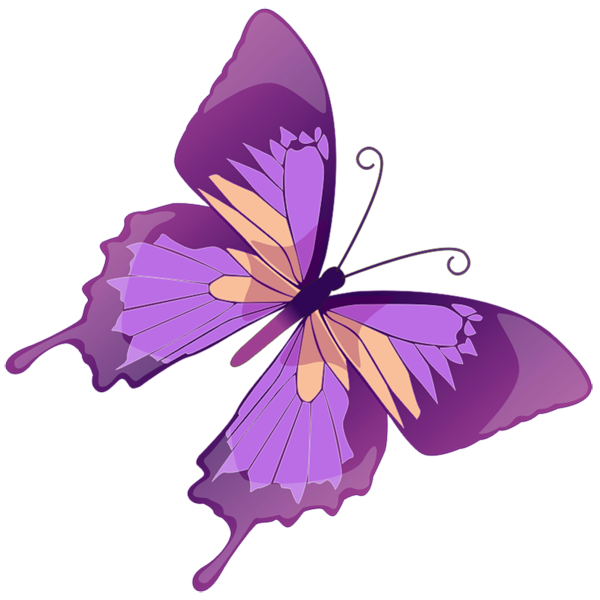 Transparent butterfly png picture. Insects clipart purple