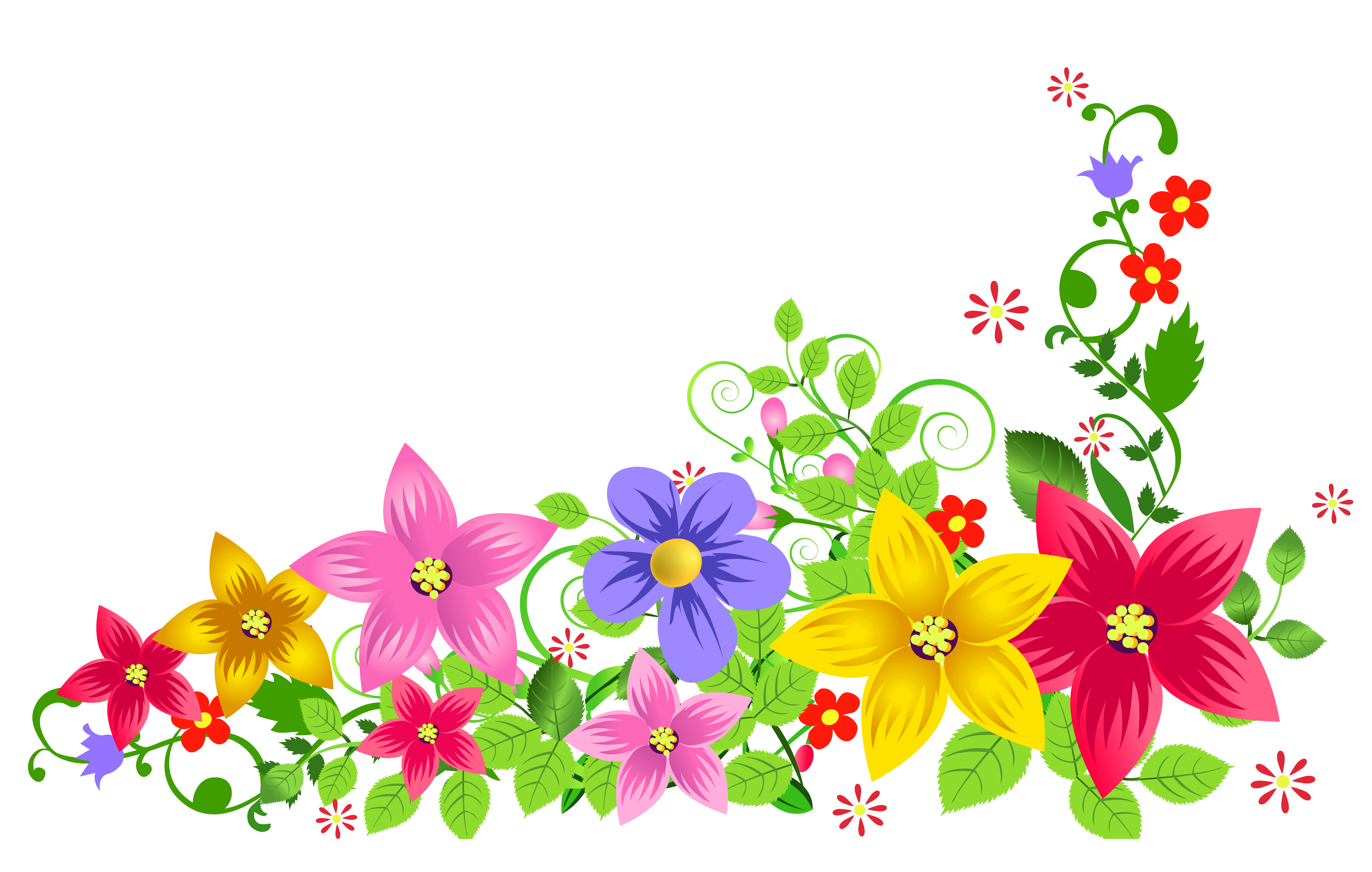 Floral transparent images pluspng. Flower background png